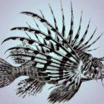 fisk / Fisch